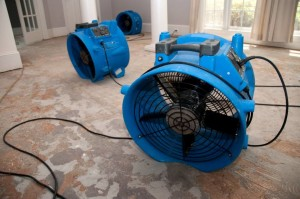 Specialized water removal drying fans